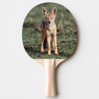 Raquette Tennis De Table Portrait de chacal à dos noir