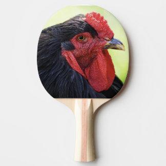 Raquette Tennis De Table poulet