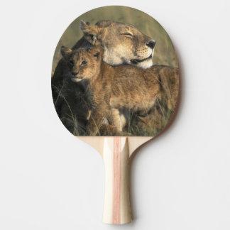 Raquette Tennis De Table Réservation de jeu du Kenya, Mara de masai, lionne