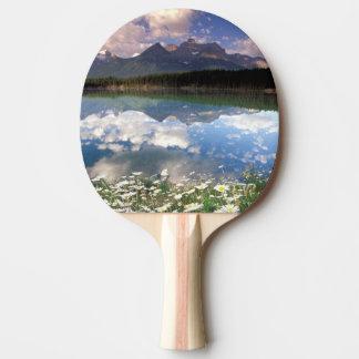 Raquette Tennis De Table Ressortissant 2 de l'Amérique du Nord, Canada,