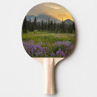 Raquette Tennis De Table Terrain de chasse de Henry d'Indien au lever de