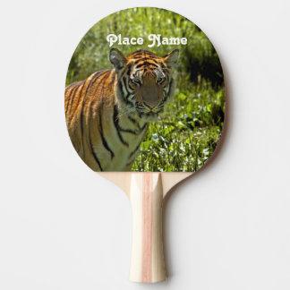 Raquette Tennis De Table Tigre sud-coréen