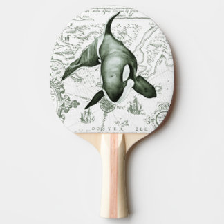 Raquette Tennis De Table Vert de carte d'orque