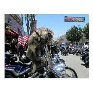 Rassemblement 2013 de moto de Hollister Carte Postale