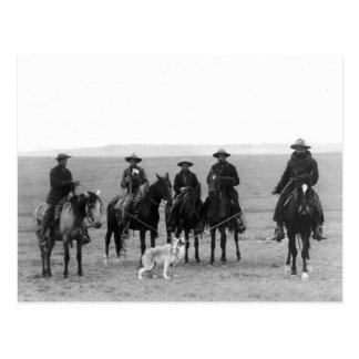 Rassemblement de loup gris, 1887 cartes postales