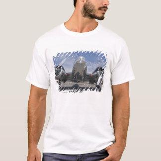 Rassemblement de Washington, Arlington, airshow. T-shirt