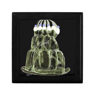rat élégant de jello du thé vert des fernandes petite boîte à bijoux carrée