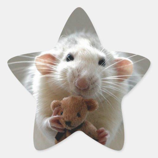 Rat mignon tenant le nounours sticker en étoile