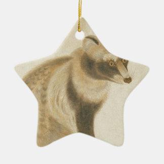 Raton laveur japonais ornement étoile en céramique