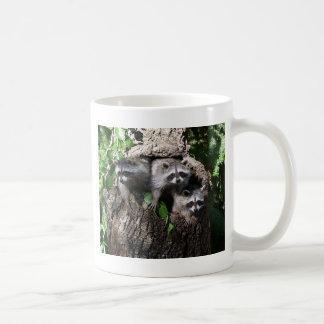 Raton laveur - les trois amis mug