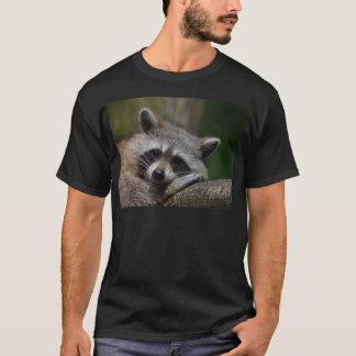 Raton laveur t-shirt