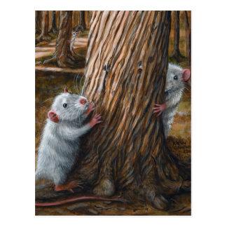 Rats par la vieille carte postale de cache-cache