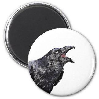 Raven appelle noir aimant