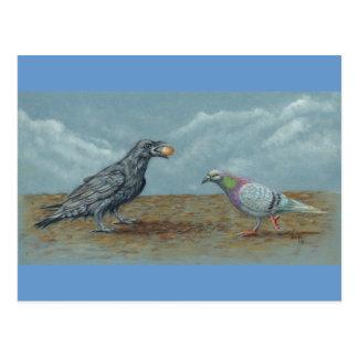 Raven avec l'oeuf tracassé par la carte postale de