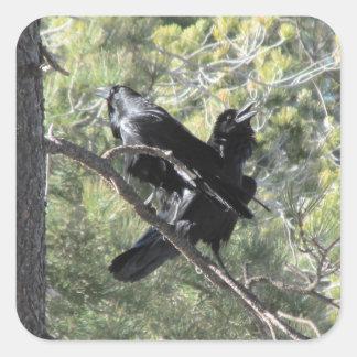 Ravens parlant sur la montagne sticker carré