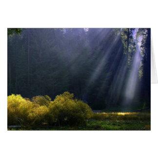 Rayons de carte de lumière
