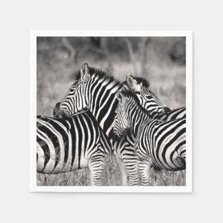 Rayures noires et blanches de safari de nature de serviette en papier