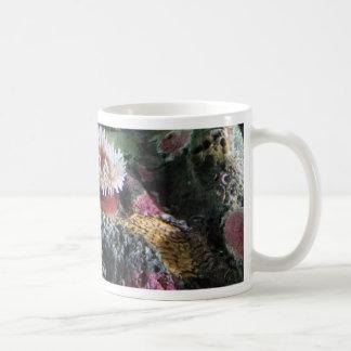 Récif coralien d'aquarium sous-marin coloré mug