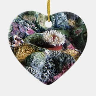 Récif coralien d'aquarium sous-marin coloré ornement cœur en céramique