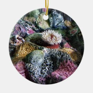 Récif coralien d'aquarium sous-marin coloré ornement rond en céramique