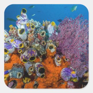 Récif coralien et poissons sticker carré