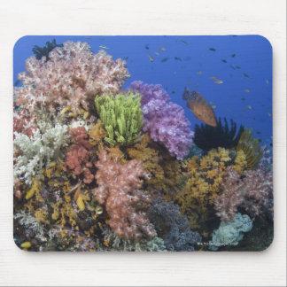 Récif coralien, vue d'uderwater tapis de souris