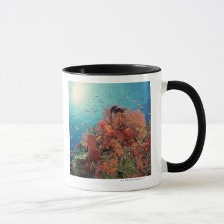 Récif pittoresque des coraux durs, coraux mous 2 mug