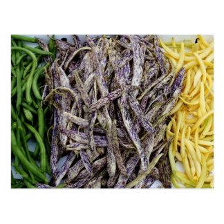 Récolte de carte postale de légume d'haricots