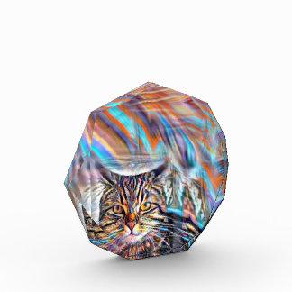 Récompense À la dérive chez le chat tropical de coucher du