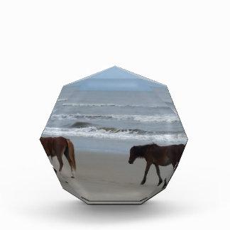 Récompense Banques externes de chevaux sauvages