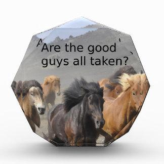 Récompense Madame Horse Gossip : Les bons garçons sont-ils