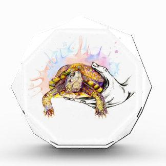 Récompense Tenir une tortue