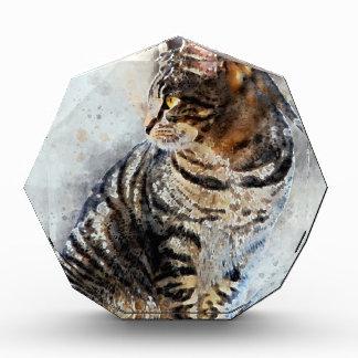 Récompenses En Acrylique Art mignon d'aquarelle de chat tigré