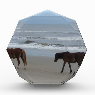 Récompenses En Acrylique Banques externes de chevaux sauvages