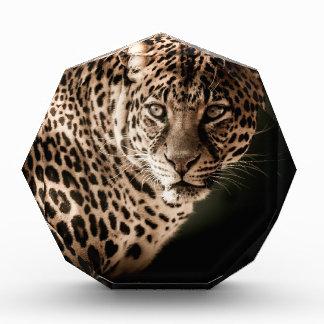 Récompenses En Acrylique Cadeaux de tigre