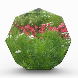 Récompenses En Acrylique De fleurs roses de nature herbe florale et