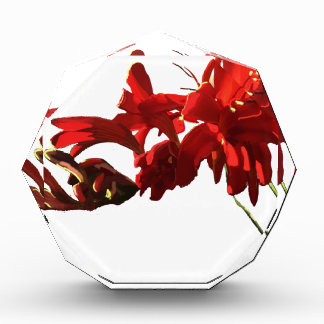 Récompenses En Acrylique Fleur rouge
