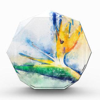 Récompenses En Acrylique Oiseau d'art d'aquarelle de paradis