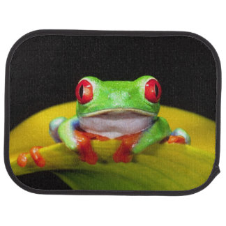 Red Eye Treefrog, callidryas d'Agalychinis, Tapis De Voiture