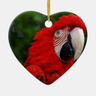 Red Macaw Ornement Cœur En Céramique