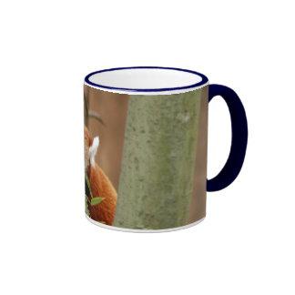 red-panda-026 tasse à café