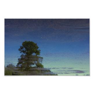 Réflexion d'arbre dans l'eau impression photo