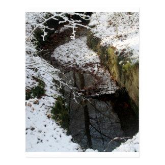 Réflexion de l eau de forêt d hiver cartes postales