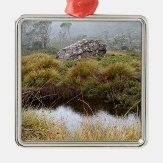 Réflexions brumeuses de matin, Tasmanie, Australie Ornement Carré Argenté