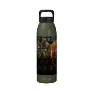 Réflexions de forêt de bouleau bouteilles d'eau réutilisables