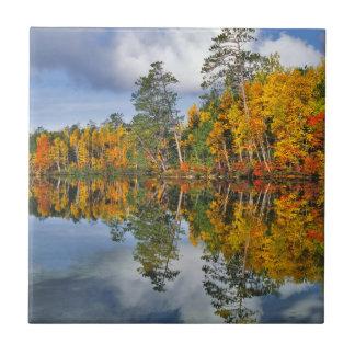 Réflexions d'étang d'automne, Maine Petit Carreau Carré