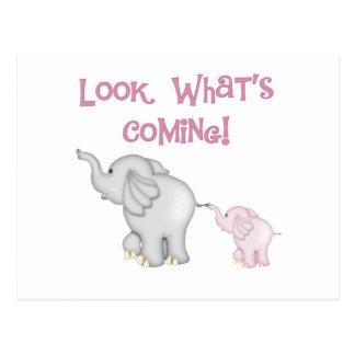 Regard d'éléphants roses ce qui vient carte postale