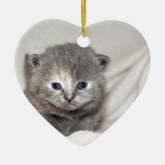 Regardez ce petit chaton gris ornement cœur en céramique