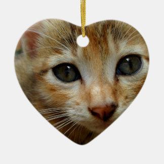Regardez-moi ! Chaton tigered par bonbon Ornement Cœur En Céramique