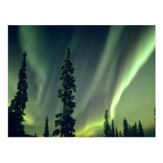Région des Etats-Unis, Fairbanks, Alaska central, Carte Postale